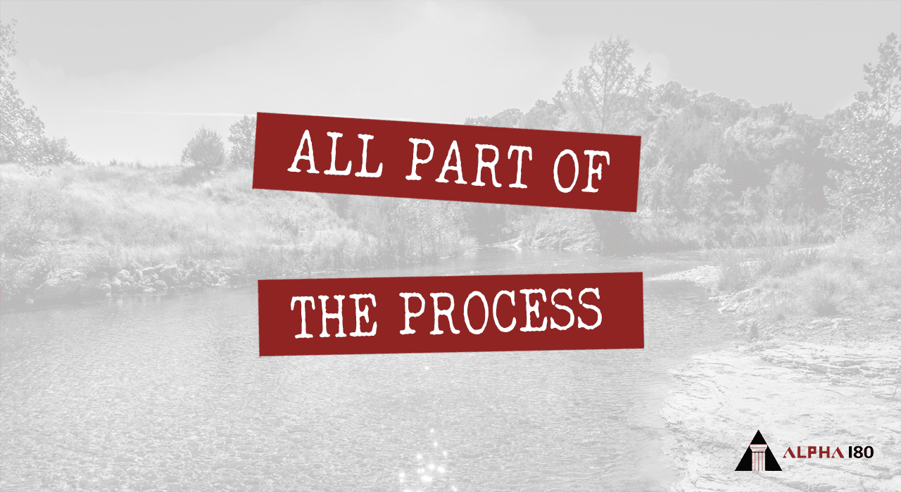 All Part of the Process